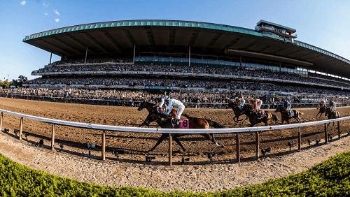 Belmont Park Racetrack Odds