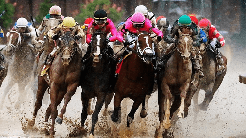 Kentuck Derby Horse Race Betting